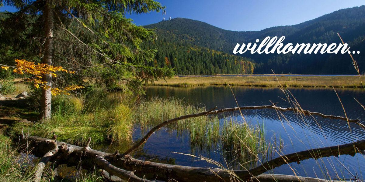 Wandern im Bayerischen Wald in Bayern auf dem Großen Arber