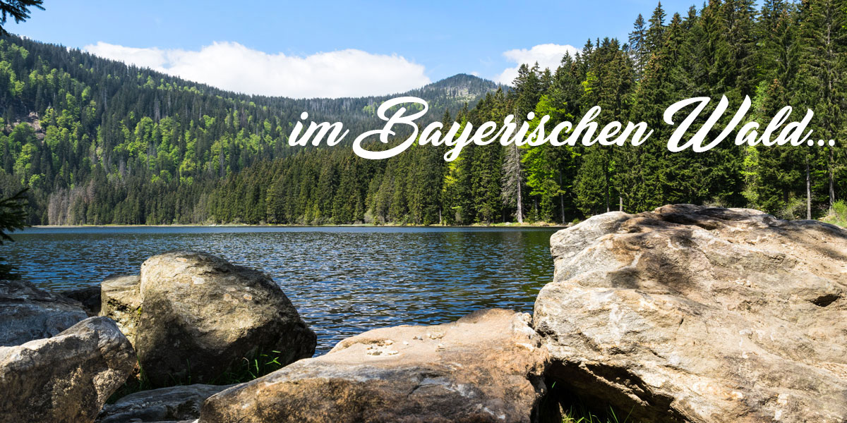Urlaub im Nationalpark Bayerischer Wald in Bayern nähe Bodenmais am Großen Arber